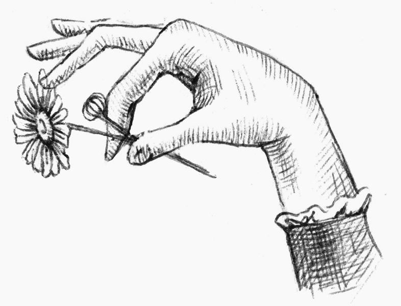 illustrazione mano fiore